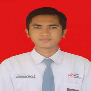 Syahid Ma`ruf Amir